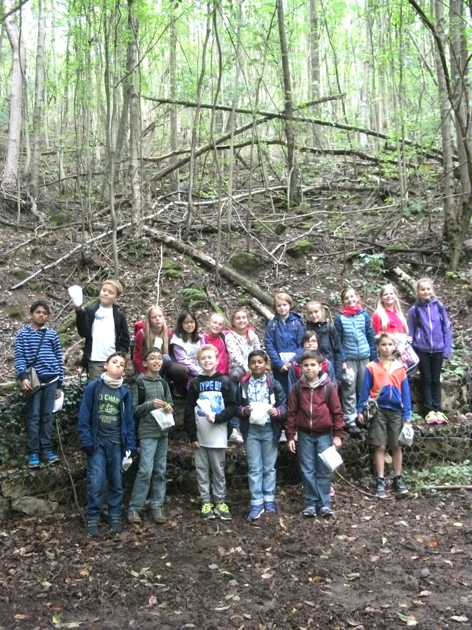 school trip to the forest Outdoor learning & forest school over 65 acres also corporate facilities: building hire, meeting rooms, 180 bed accommodation & site hire book online now.